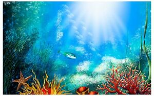 Fish tank background how to stick on