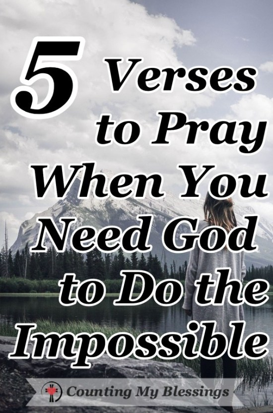 Praying for the impossible pdf