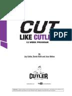 Fst 7 workout program pdf