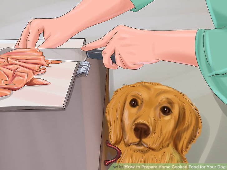 Home cooking for your dog pdf