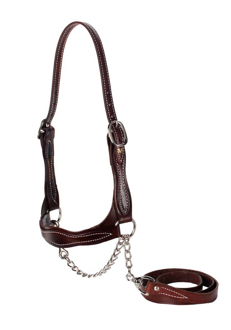 instructions to make leather cattle halter