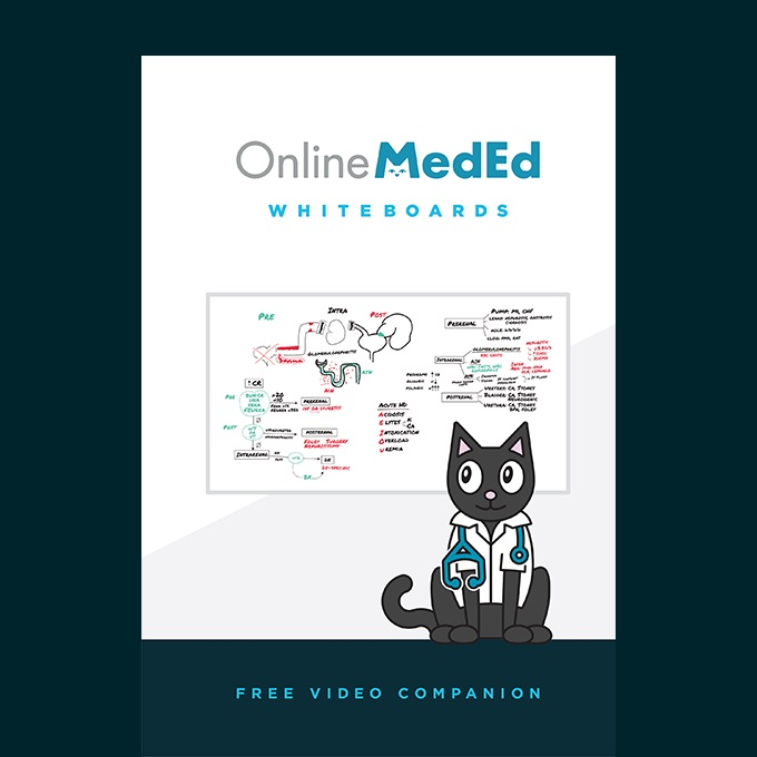 Onlinemeded intern guide pdf download free