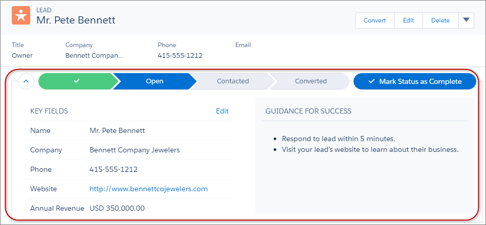Sales process in salesforce pdf